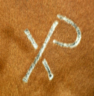 XP brand, courtesy of Levi